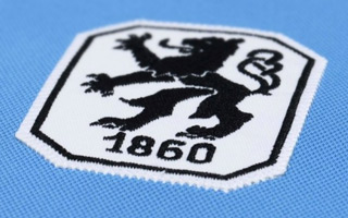 Munich: Webasto owner promises stadium to TSV 1860