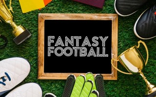 Fantasy football beginners guide