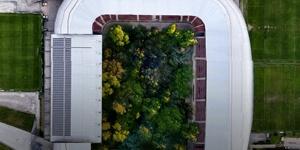 Austria: Forest to grow on the field in Klagenfurt