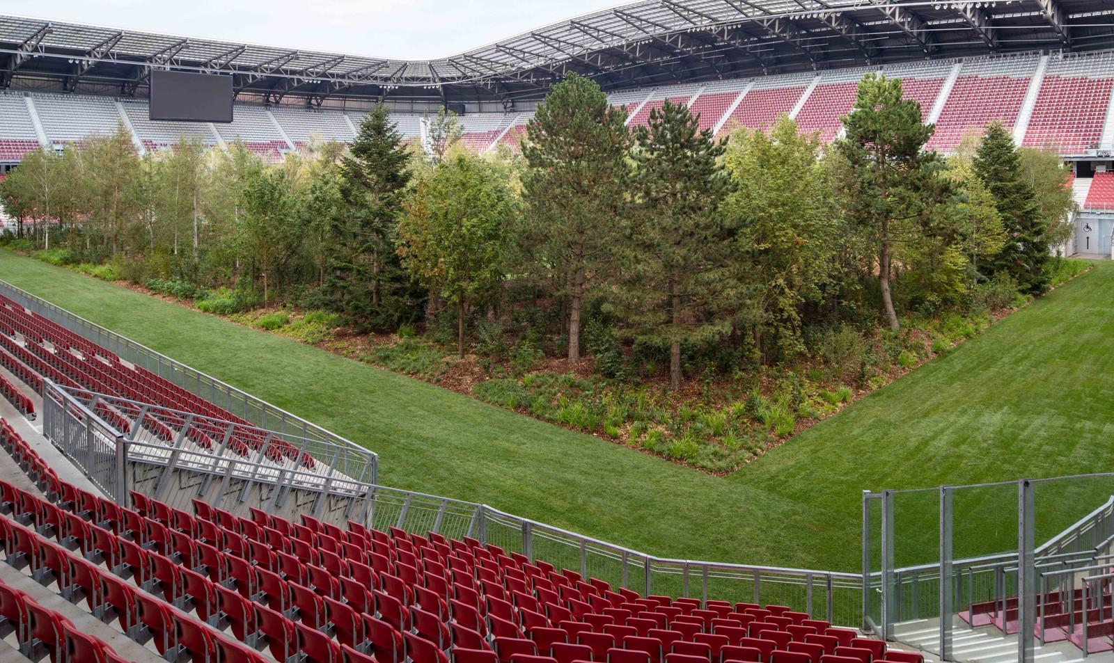For Forest - Klagenfurt