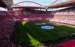 Portugal: 18 years since Estádio da Luz inauguration